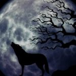 Werwolf von Düsterwald